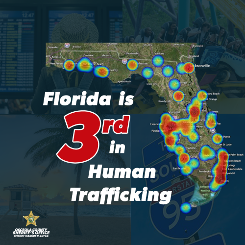 Florida ranks 3rd in rate of human trafficking.